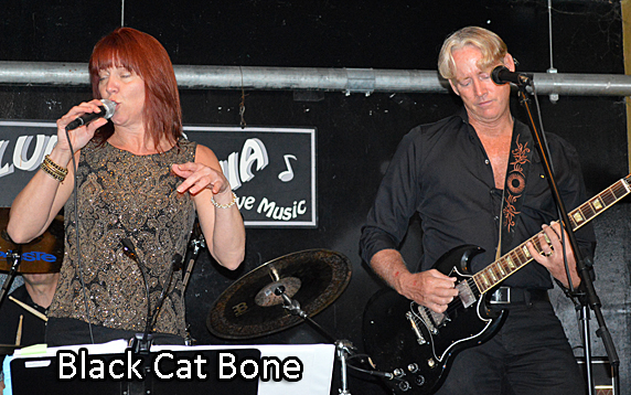 Back Cat Bone